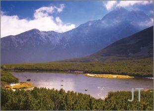 Landscape Likenesses 13