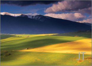 Hillside Fields (Meadows) 1